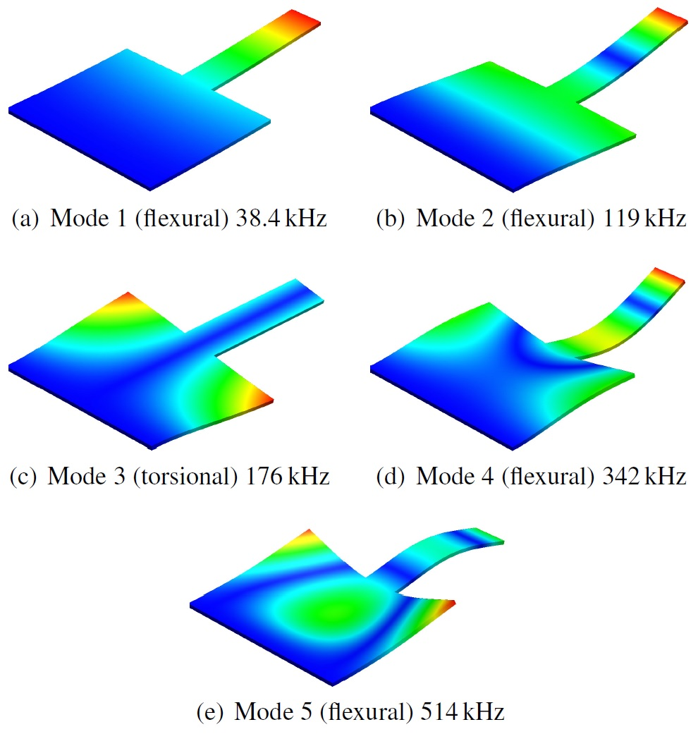Design and Characterization of Cantilevers for Multi-Frequency Atomic Force Microscopy