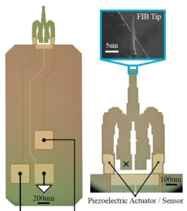 AFM Cantilever Design for Multimode Q Control: Arbitrary Placement of Higher-Order Modes